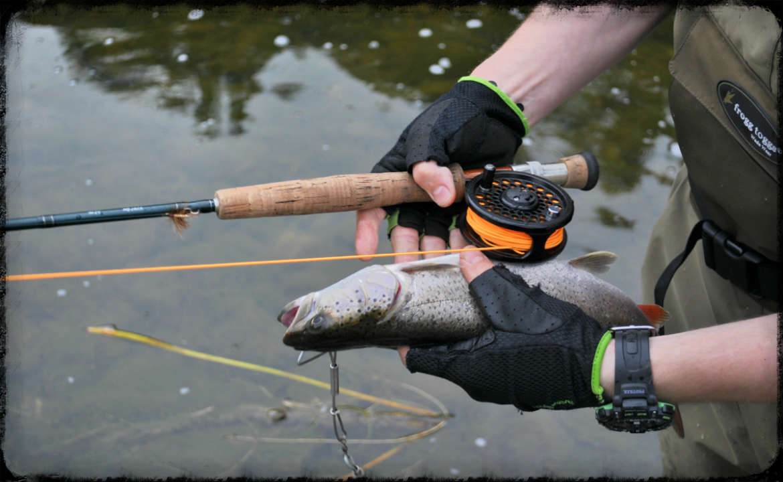 спиннинг рыбацкий фото