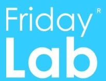 производитель Friday Lab