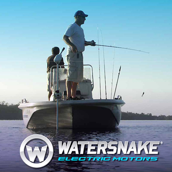 Электромоторы WaterSnake