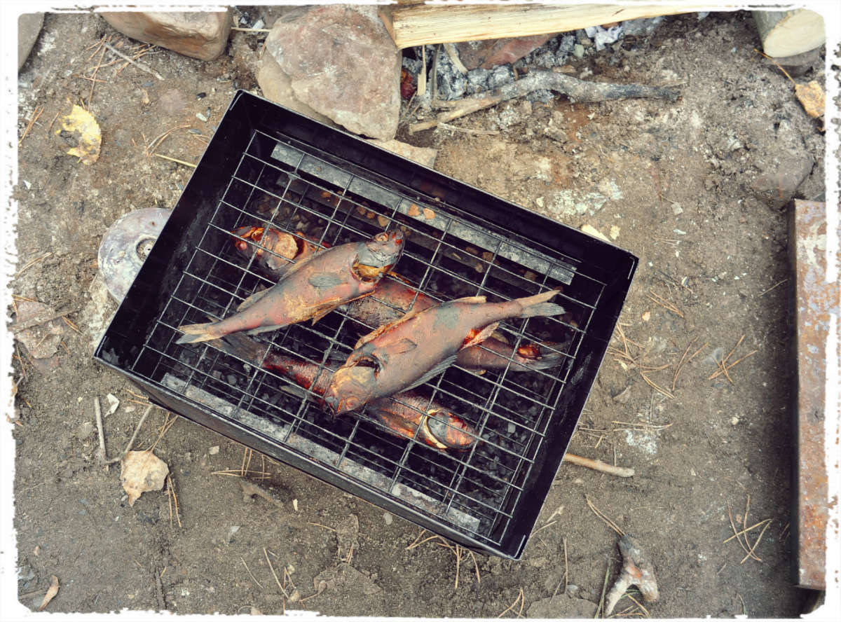 Коптильня горячего копчения