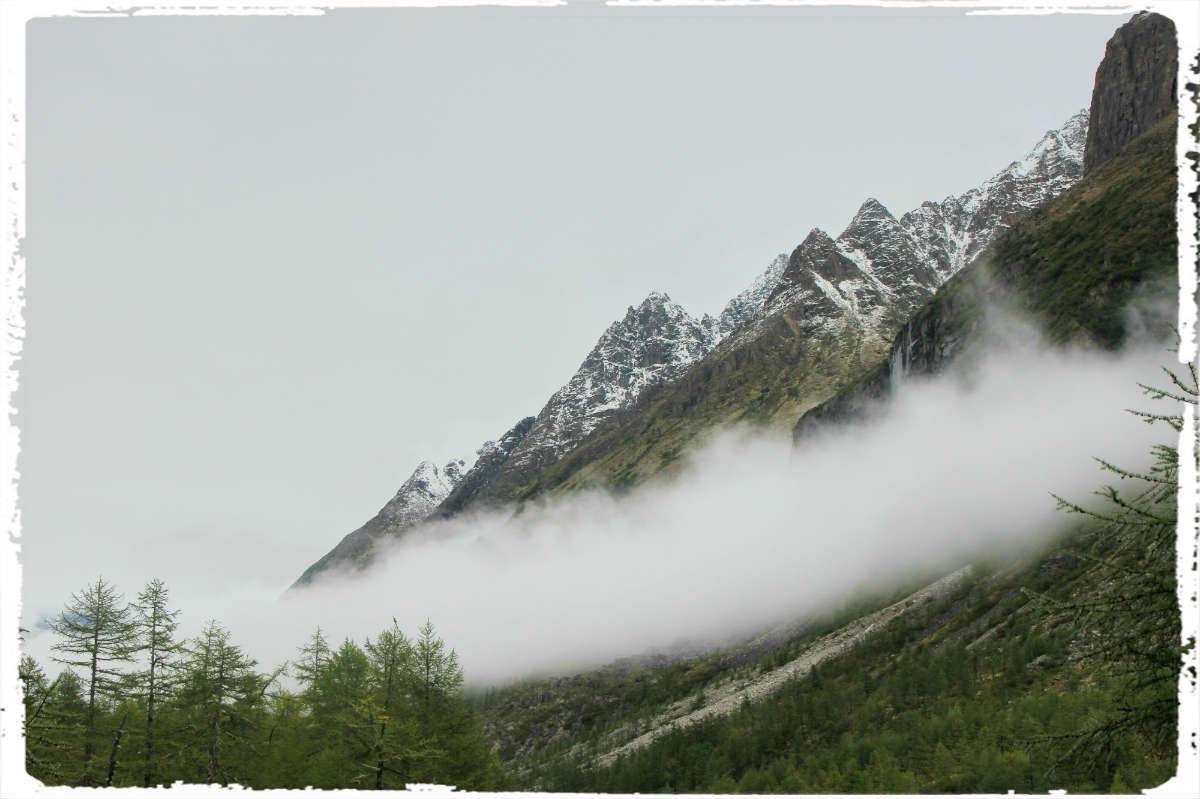Утром выпал туман...
