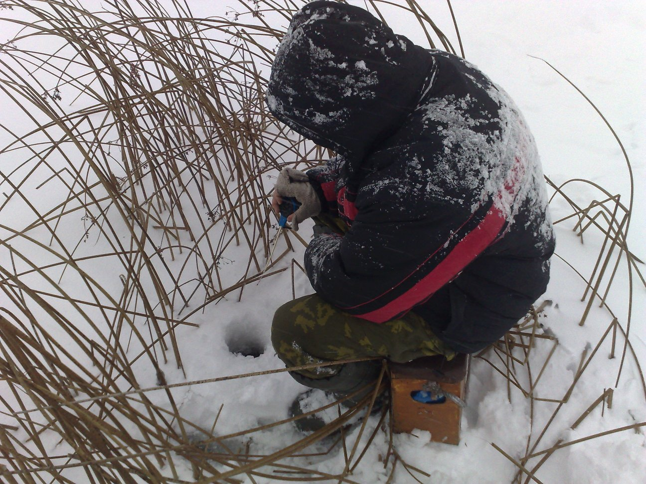 Ловля плотвы зимой на мормышку.